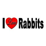 I Love Rabbits for Rabbit Lovers Mug