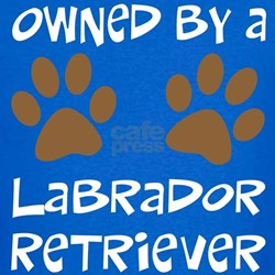 Owned By A Lab... T