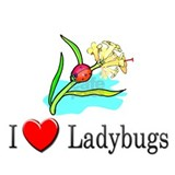 I Love Ladybugs Mug