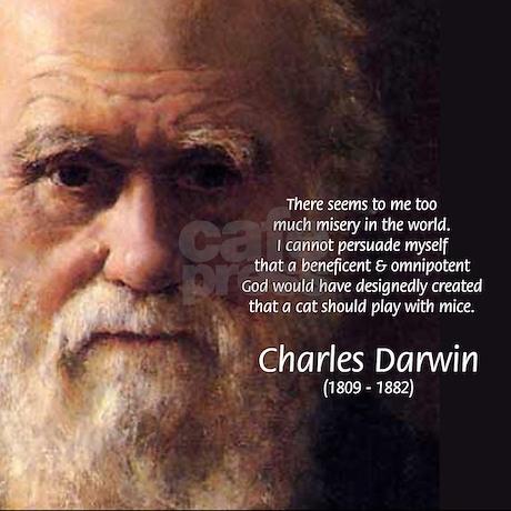 anti darwinism essay