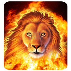 Lion 1 Shirt
