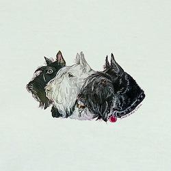 Scottish Terrier Trio T
