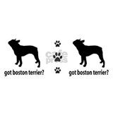Got Boston Terrier? Mug