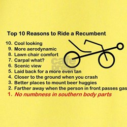 Top Ten Reasons to Ride a Recumbent