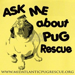 Ask Me About Pug Rescue T