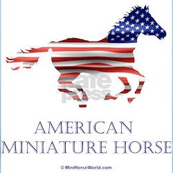 American Miniature Horse Women's Pink T-Shirt