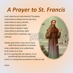 A Prayer to St. Francis T-Shirt