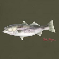 Cool Striped bass T-Shirt
