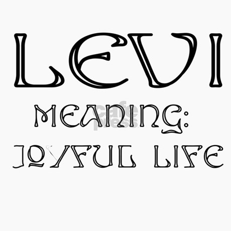 Levi Name Meaning Travel Mug by PicsNStuff
