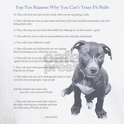 Top 10 Reasons Shirt