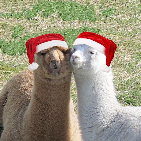 Alpaca Christmas Ornament (Round) by alpacacompany