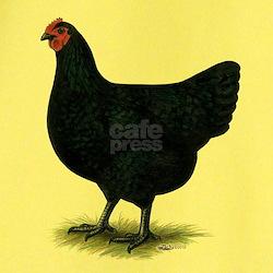 Jersey Giant: Black Hen T