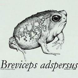 Breviceps T