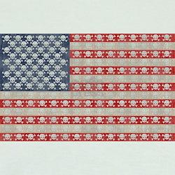 American Pirate Flag T