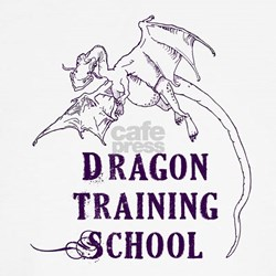 how to train your dragon clothes