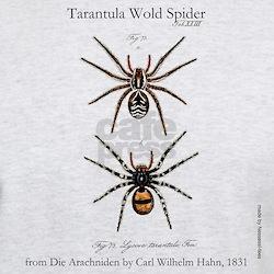 Tarantula Wolf Spider T-Shirt