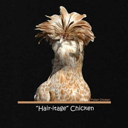 """""""Hair-itage"""" Chicken T-Shirt"""
