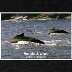 Humpback Whale Photo (Front) Black T-Shirt