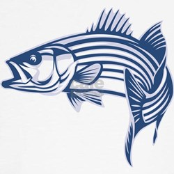 Graphic Striped Bass Tee