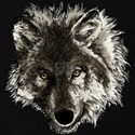 Native american wolf Sweatshirts & Hoodies