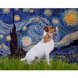 Starry Night / JRT Water Bottle