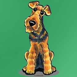 Airedale Welsh Terrier T