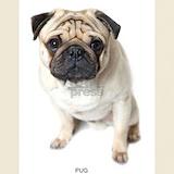Pug dog T-shirts