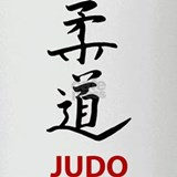 Judo Pint Glass