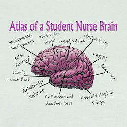 Nursing Student IV 2011 T