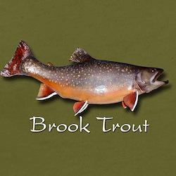 Organic Men's Brook Trout T-Shirt (dark)