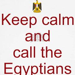 Funny Egypt revolution T