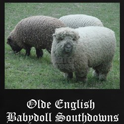 Babydoll Southdown Tee