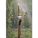 Lineman Canvas Art
