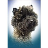 Cairn terrier Wall Decals