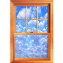 Windows Wall Decals