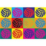 Volleyball Wrapped Canvas Art