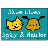 Spay and neuter Wrapped Canvas Art