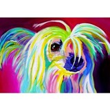 Chinese crested dog Posters