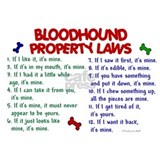 Bloodhound property laws Wall Decals