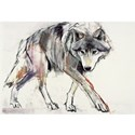 Wolf Framed Prints
