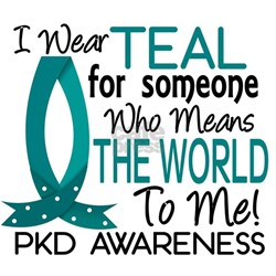 Means World To Me 1 PKD Shirt