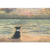 Border collie Wrapped Canvas Art
