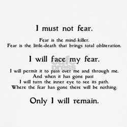 Litany Against Fear T