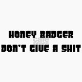 honey badger Ceramic Travel Mug