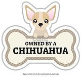 Chihuahua Pajamas & Loungewear