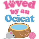 Loved By An Ocicat Water Bottle
