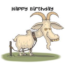 Happy birthday goat - photo#21