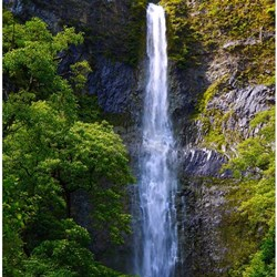 hanakapiai_falls_kauai_tropical_shower_curtain.jpg?height=250&width=250&pad ...