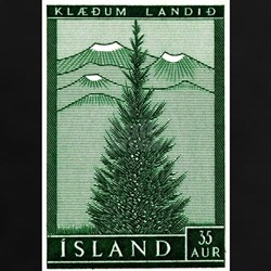 1957 Iceland Spruce with Volcanoes Stamp Tee