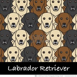 Lots of Labs T-Shirt